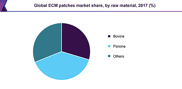 global-ecm-patches-market.png