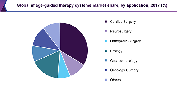 Global image-guided therapy systems market share, by application, 2017 (%)